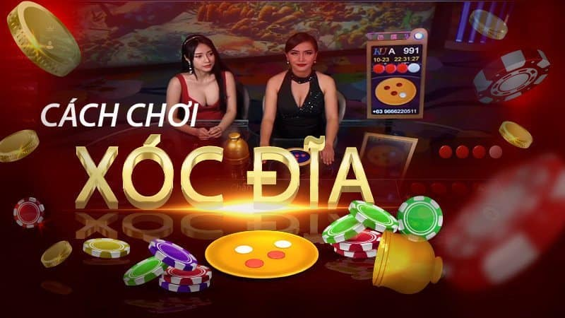 What is disc shock?  Rules & how to play roulette at 12bet