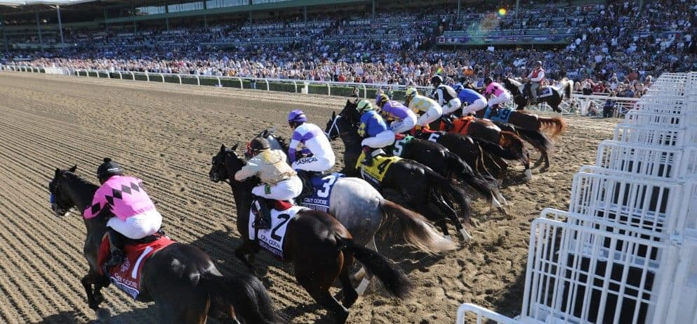 What is coin-eating horse racing?